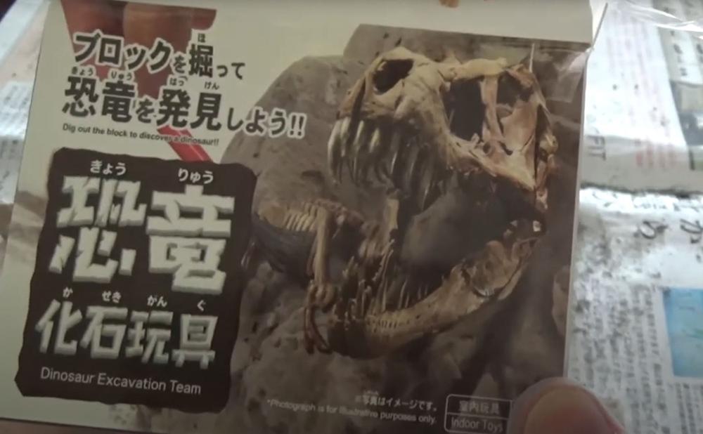 【ダイソー】100円の恐竜化石玩具
